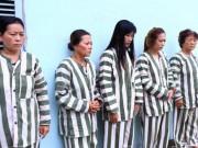An ninh Xã hội - Bí mật của 12 bà cùng 6 ông trong ngôi nhà ở Dầu Tiếng