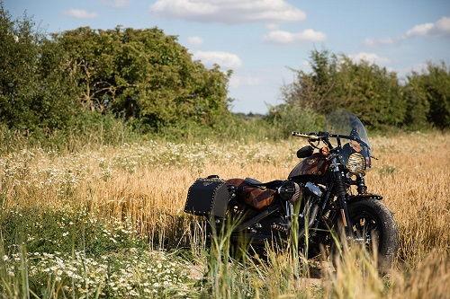 Harley-Davidson Forty-Eight độ phong cách viễn tưởng - 1