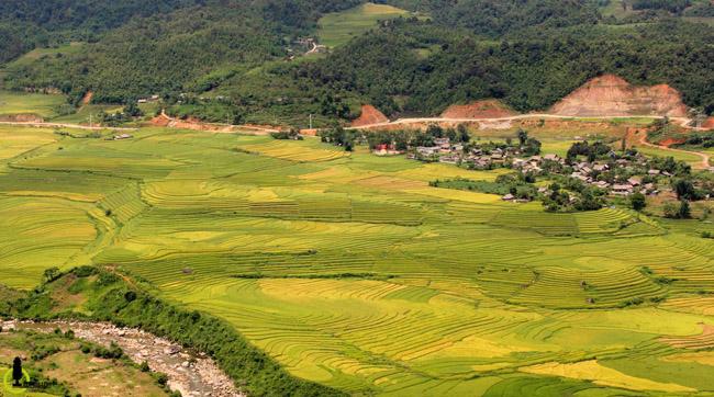Lạc lối trong thung lũng lúa chín tráng lệ nhất Lào Cai - 6