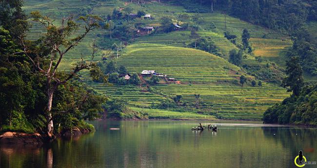 Lạc lối trong thung lũng lúa chín tráng lệ nhất Lào Cai - 10