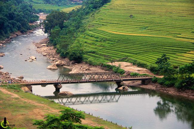 Lạc lối trong thung lũng lúa chín tráng lệ nhất Lào Cai - 12