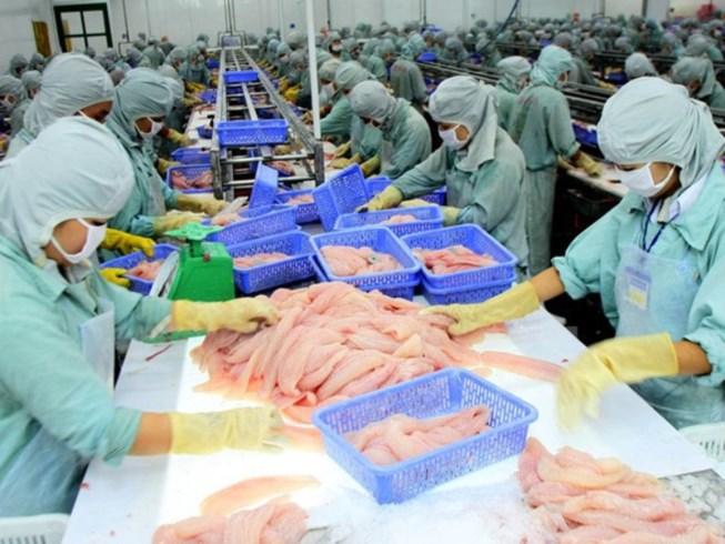 Mất cơ hội xuất khẩu 100 tấn mỡ cá chỉ vì thủ tục - 1