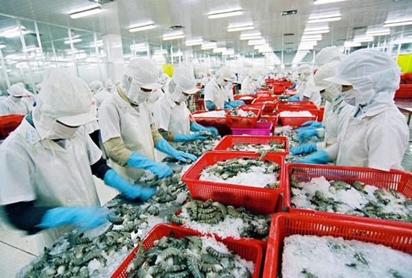 Mỹ tăng thuế chống bán phá giá đối với tôm Việt Nam - 1