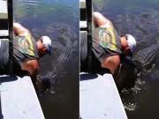 Phi thường - kỳ quặc - Đập tay vào mặt cá sấu hoang rồi nâng mõm lên để hôn