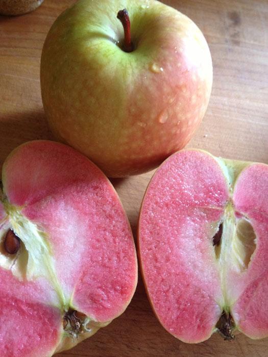 """Mê mẩn loại táo Mỹ lạ """"xanh vỏ - hồng lòng"""" siêu dễ thương - 7"""