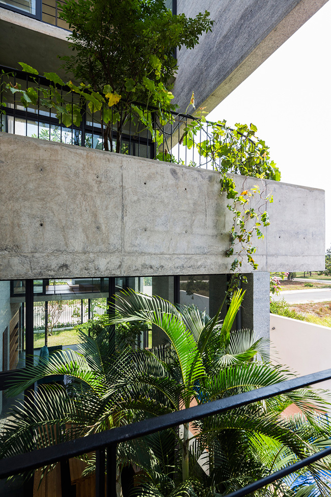 Trong không gian đô thị chật hẹp, thiếu cây xanh,  Bình House  như một làn gió mới, vừa tiện nghi, hiện đại, vừa trong lành, thân thiện với thiên nhiên.