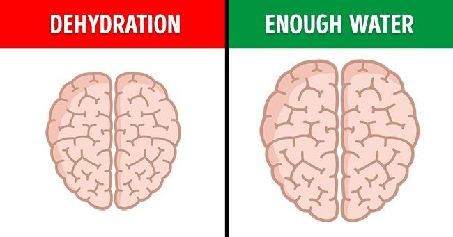 Những thói quen cần rèn luyện để có bộ não thiên tài - 5