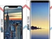 Dế sắp ra lò - iPhone 8 sẽ ra sao khi đặt cạnh Galaxy Note 8 và LG V30?
