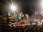 Tin tức trong ngày - Phát hiện ba thi thể đang phân hủy trôi dạt bên suối