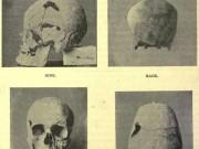 Phát hiện hài cốt hoàng đế Ai Cập có gene khổng lồ