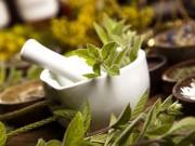 Sức khỏe đời sống - Chữa sốt xuất huyết hiệu quả nhờ bài thuốc từ cây cỏ