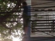 Tin tức trong ngày - Rợn người phát hiện thi thể nam lủng lẳng trên cây