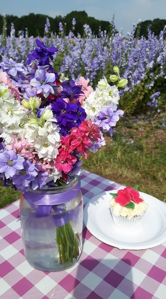 Ngỡ ngàng vẻ đẹp thiên đường hoa mùa hè chỉ mở cửa 7 ngày mỗi năm - ảnh 8