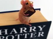 Nhật ký phiêu lưu ký (P6): Sự tích con chuột