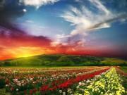""""""" Phát hờn """"  với vẻ đẹp 4 thung lũng quyến rũ nhất thế giới"""