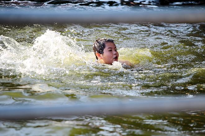 Ao tù hoá bể bơi xanh mát vạn người mê ở Hà Nội - ảnh 2