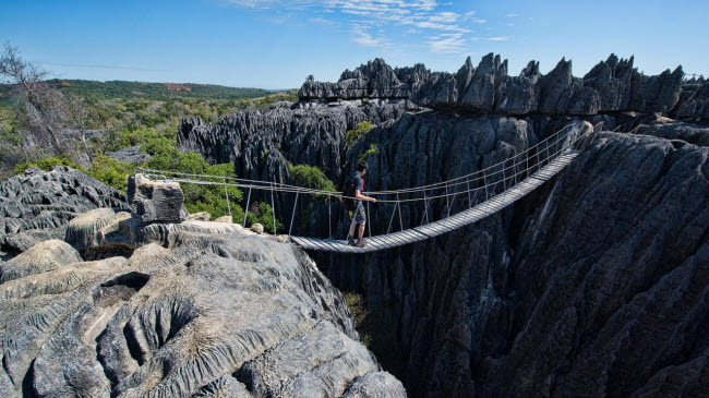 Kỳ quan rừng đá ít người có thể tới ở Madagascar - ảnh 2