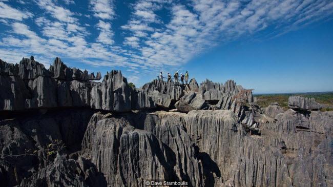 Kỳ quan rừng đá ít người có thể tới ở Madagascar - ảnh 7