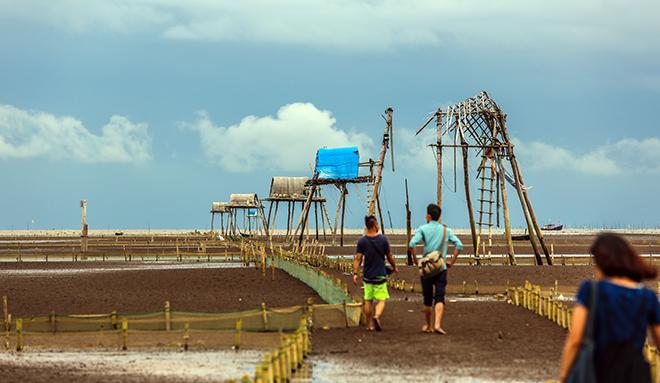 Về Đồng Châu xem cào ngao, ngắm hoàng hôn hoang hoải bên bờ biển hoang sơ - ảnh 3