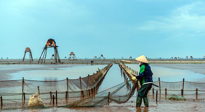 Về Đồng Châu xem cào ngao, ngắm hoàng hôn hoang hoải bên bờ biển hoang sơ - ảnh 7