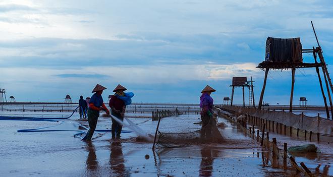 Về Đồng Châu xem cào ngao, ngắm hoàng hôn hoang hoải bên bờ biển hoang sơ - ảnh 6