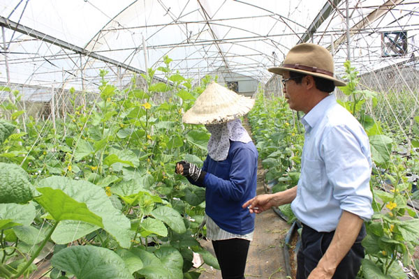 Chuyện lạ có thật: Thu chục tỷ đồng mỗi năm nhờ trồng ớt...lấy hạt - ảnh 5
