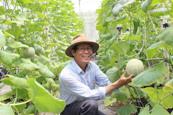 Chuyện lạ có thật: Thu chục tỷ đồng mỗi năm nhờ trồng ớt...lấy hạt - ảnh 7