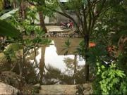 Tin tức trong ngày - Vụ 3 cháu bé chết đuối dưới mương nước: Khăn tang trắng quê nghèo