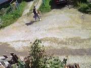 Nga: Chủ nhân bất lực nhìn chó giết chết đồng loại