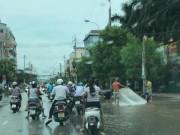 Clip: Cá bơi lội tung tăng trên phố, dân đổ xô đi  quăng chài