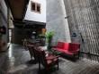 Zen house - căn nhà hòa mình với thiên nhiên tại Bình Thạnh
