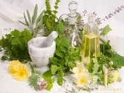 Đệ nhất thảo dược hỗ trợ điều trị trĩ và suy giãn tĩnh mạch