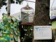 Đồng loạt xả hàng trước ngày trả đất quốc phòng ở Tân Sơn Nhất