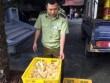 Chặn thực phẩm bẩn ở biên giới Lạng Sơn