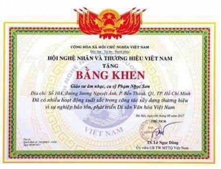 Tranh cãi việc ca sĩ Ngọc Sơn được phong tặng Giáo sư âm nhạc - 1