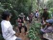 """Bất ngờ trước nguyên nhân  """" mất tích """"  của Giám đốc rừng phòng hộ Quảng Bình"""