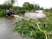VN còn hứng chịu bao nhiêu cơn bão từ nay đến cuối năm 2017?