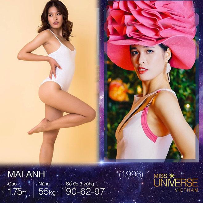3 kiều nữ Việt có vòng 3 gần 1 mét gây chú ý khi thi hoa hậu - 6