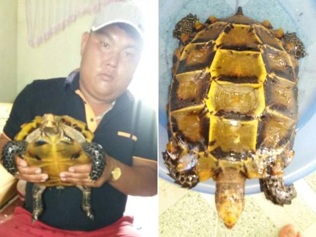 """Thả cụ rùa trăm tuổi về với tự nhiên vì sợ tháng """"cô hồn"""" - 2"""