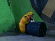Video Clip Cười - Ấu trùng tinh nghịch Larva gặp đại nạn giữa mưa bão