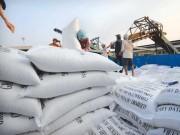 """Giá cà phê, cao su, điều... tăng cao, xuất khẩu nông sản  """" ghi điểm """""""