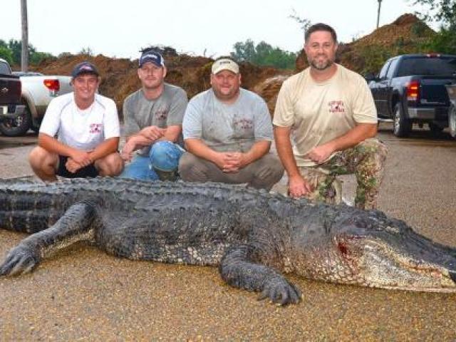Cá sấu khổng lồ lẻn vào nhà, cả làng Ấn Độ cãi nhau tìm cách xử - 3