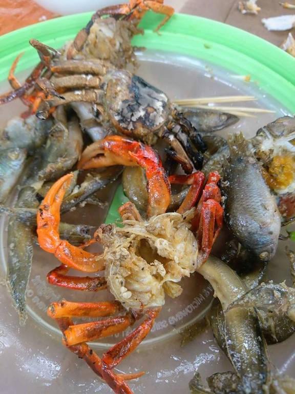 Về An Giang ăn cá linh trên đồng nước nổi - 13