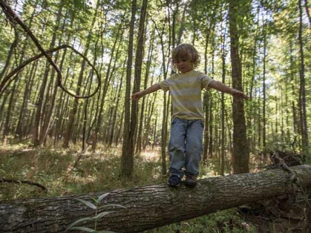 15 câu hỏi giúp con tư duy nhạy bén cha mẹ nên áp dụng hằng ngày - 2