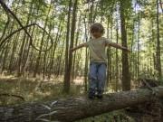 """Giáo dục - du học - Tuyệt chiêu giúp con nuôi dưỡng tư duy """"không sợ hãi"""""""