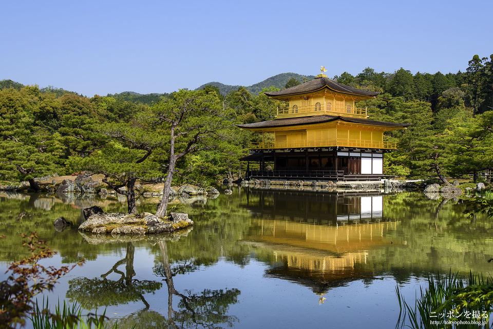 Choáng ngợp ngôi chùa được dát bằng vàng thật ở Nhật Bản - 1