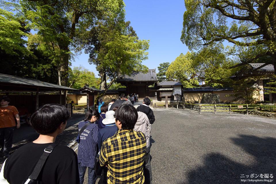 Choáng ngợp ngôi chùa được dát bằng vàng thật ở Nhật Bản - 9