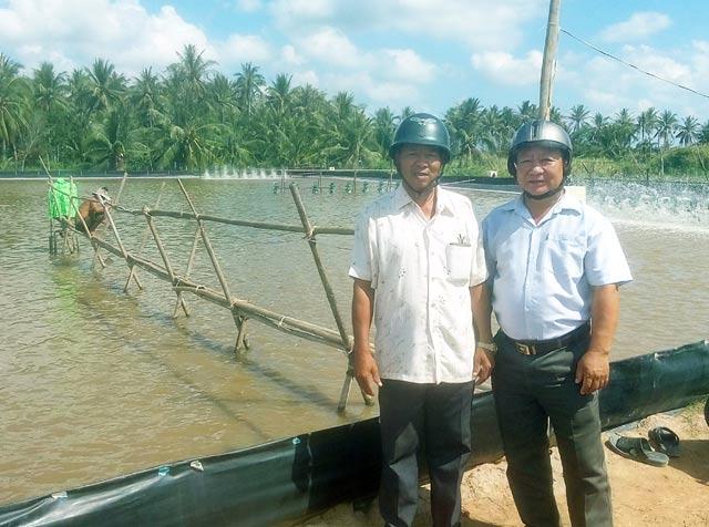 Làm giàu ở nông thôn: Trồng 700 cây dừa 2 tuổi, thu 15 triệu/tháng - 3