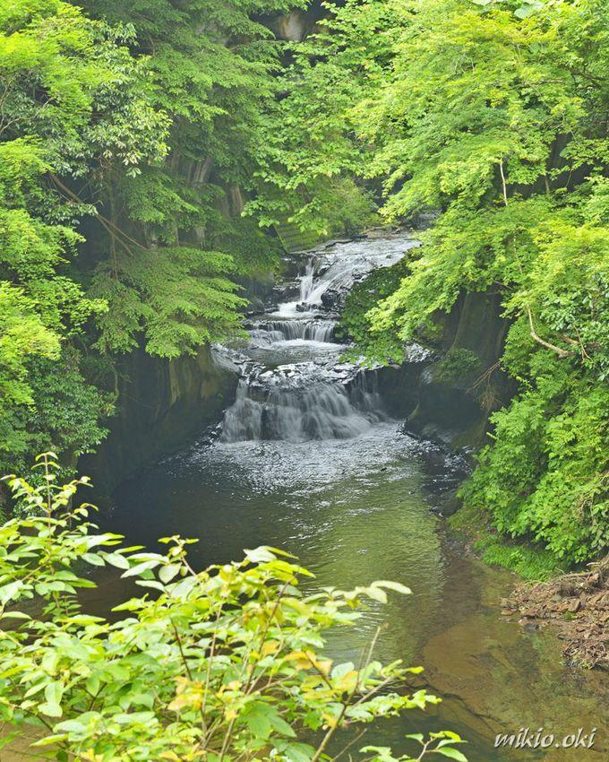 Khám phá khe suối đẹp như chốn thần tiên ở Nhật - 2
