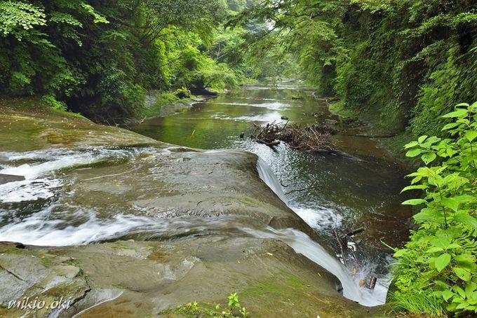 Khám phá khe suối đẹp như chốn thần tiên ở Nhật - 3